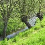 Overnachten Zuid-Limburg